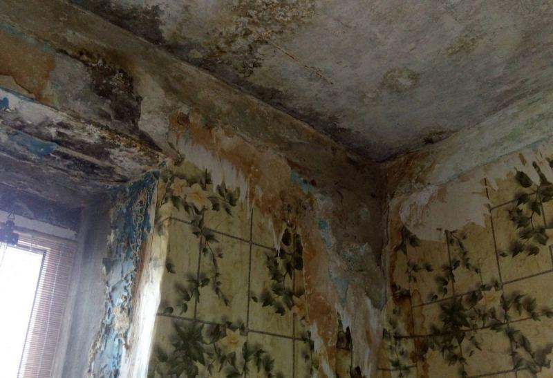 Сушка зданий - что делать, когда в доме сыро: советы экспертов как избавиться просто и быстро от лишней сырости (видео + 95 фото)