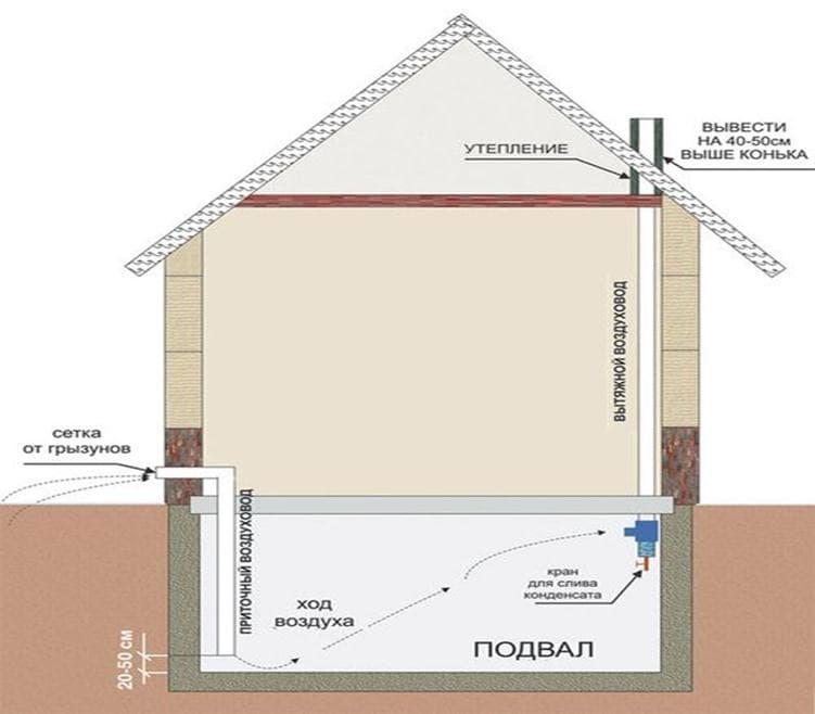 Устройство подвала и цоколя в частном доме: лучшие идеи и советы по организации пространства цокольного этажа (125 фото)